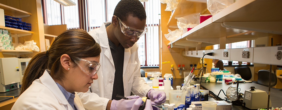 trainees working in the lab