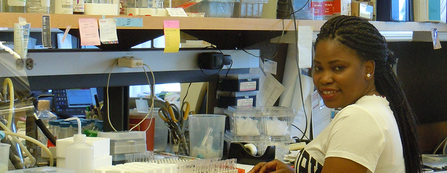 trainee working in the lab