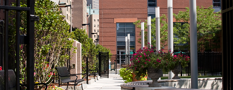 Jaharis Courtyard - Boston Campus